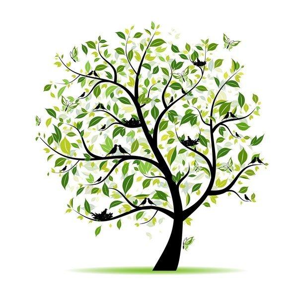 двусторонняя симметрия листья деревья песок ассоциация лучшие Статусы фото